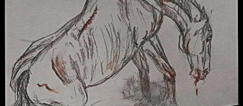 Hodowla koni, Dramatyczny udział Manifestacji obronie - zdjęcie, fotografia