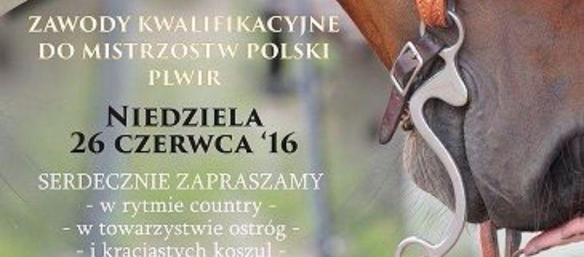 Targi i wystawy jeździeckie, ZAWODY KWALIFIKACYJNE MISTRZOSTW POLSKI PLWIR czerwca Młodzikowo - zdjęcie, fotografia