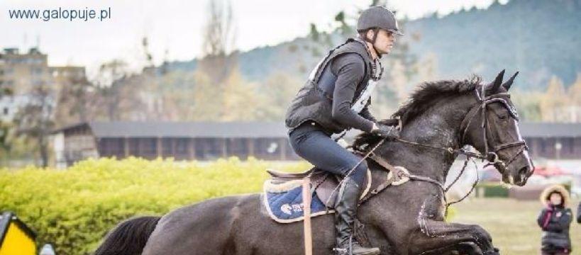 Targi i wystawy jeździeckie, Najlepsi polscy jeźdźcy przyjadą Walewic - zdjęcie, fotografia