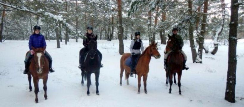 Obozy jeździeckie, Ferie siodle najbardziej jeździecki obóz czeka! - zdjęcie, fotografia
