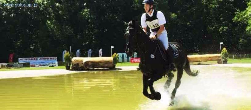 Organizacje jeździeckie, Mistrzostwa Europy - zdjęcie, fotografia