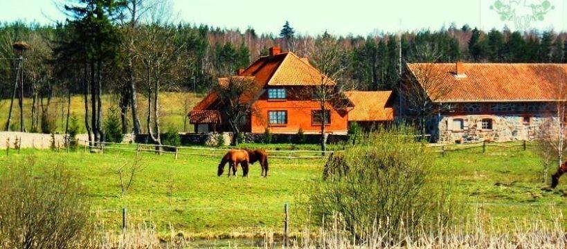 Obozy jeździeckie, Obozy Jeździeckie Młodzieżowe Mazury - zdjęcie, fotografia
