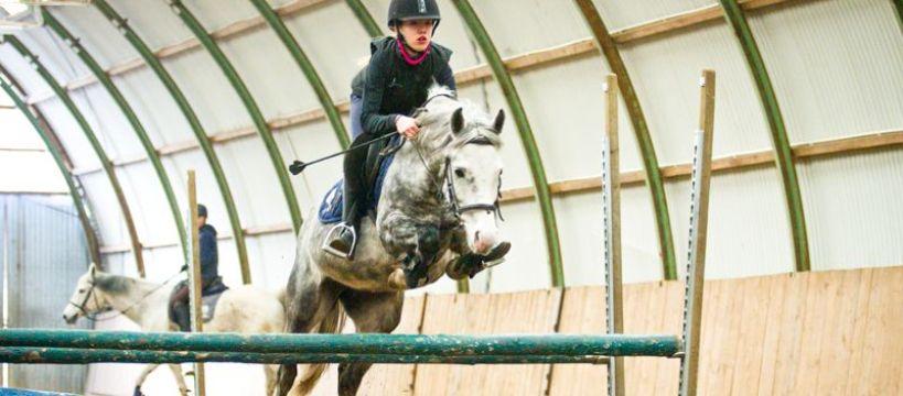 Kursy i szkolenie jeździeckie, TRENING SKOKOWY SEZONIE HALOWYM warsztaty Jerzym Krukowskim - zdjęcie, fotografia