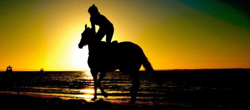 Biznes jeździecki, Nauka jazdy konnej – koszty - zdjęcie, fotografia