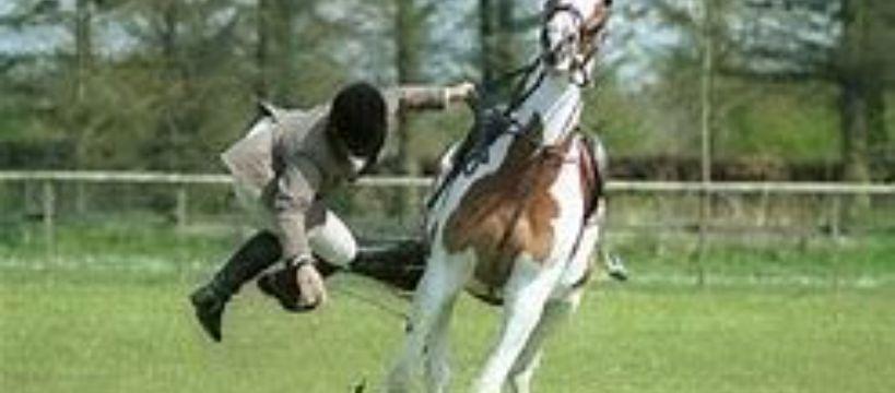 Prawo i przepisy jeździeckie, Bezpieczeństwo zagrożenia wiążące jazdą konną - zdjęcie, fotografia