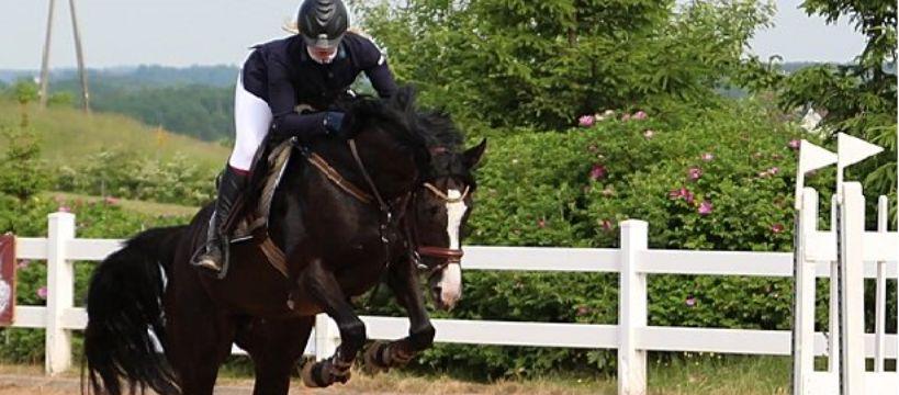 Jazda konna, można zrelaksować konia - zdjęcie, fotografia