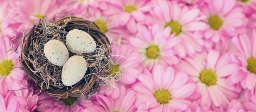Media jeździeckie, Radosnych Świąt Wielkanocnych - zdjęcie, fotografia