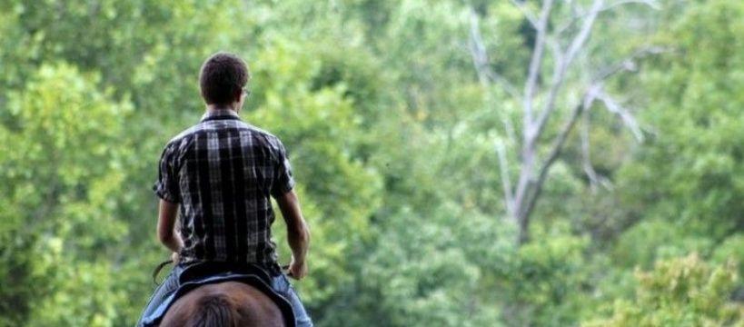 Biznes jeździecki, Idealny prezent miłośnika - zdjęcie, fotografia