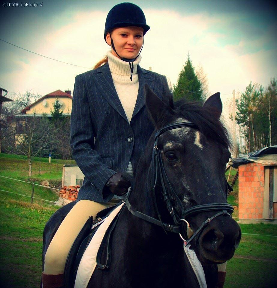 Felietony blogerów, Pilnie szukam pracy! pomoc koniach stajni zamian jazdy - zdjęcie, fotografia