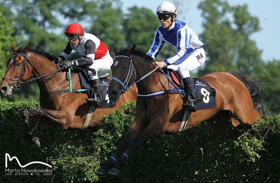 Biznes jeździecki, Weekend wyścigowy Partynicach - zdjęcie, fotografia