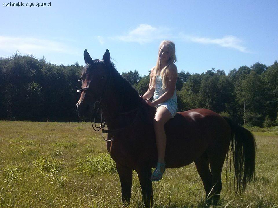 Imprezy jeździeckie, własny koń! - zdjęcie, fotografia