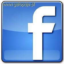 Media jeździeckie, Konkurs fotograficzny Facebooku - zdjęcie, fotografia