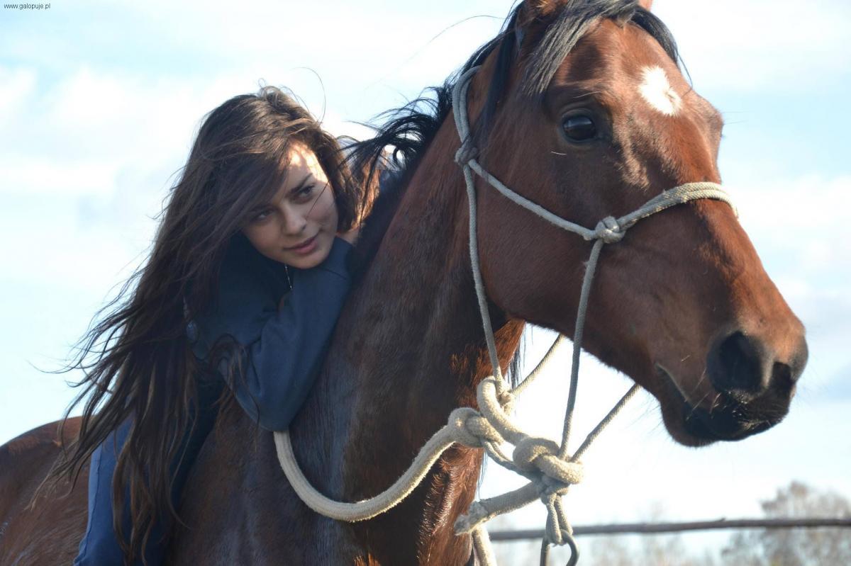 Imprezy jeździeckie, POCHOPNA DECYZJA - zdjęcie, fotografia