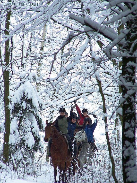 Ośrodki jeździeckie, Zimowisko Jeździeckie - zdjęcie, fotografia