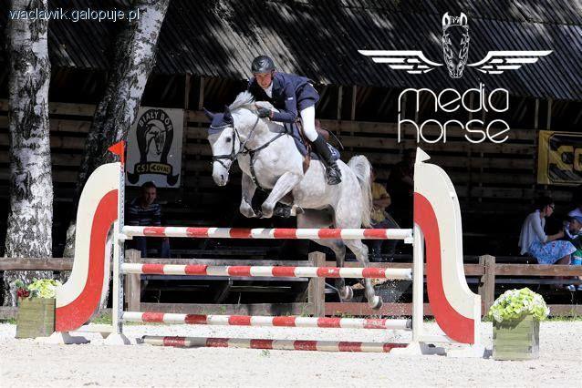 Imprezy jeździeckie, Marek Wacławik Pracowity lipiec - zdjęcie, fotografia