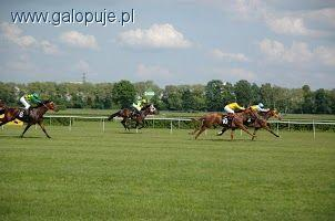 Zawody jeździeckie, Partynicach sezon pełni - zdjęcie, fotografia