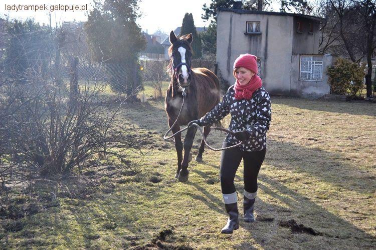Felietony blogerów, Współdzierżawa/Dzierżawa - zdjęcie, fotografia