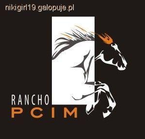 Imprezy jeździeckie, Rancho ferie siodle opinia - zdjęcie, fotografia