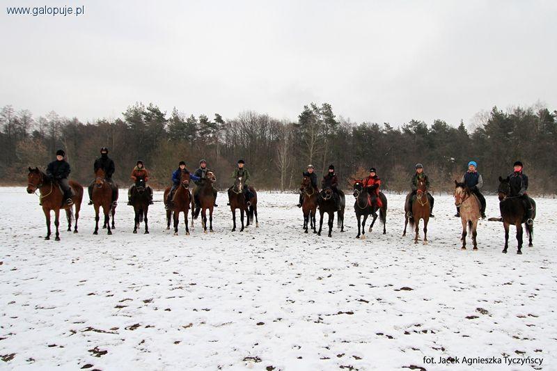 Sprzęt jeździecki, zabrać zimowy obóz konny - zdjęcie, fotografia