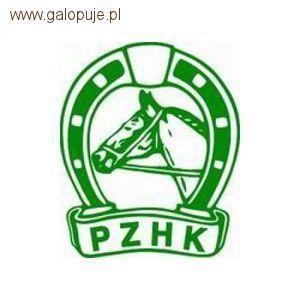 Organizacje jeździeckie, władze - zdjęcie, fotografia