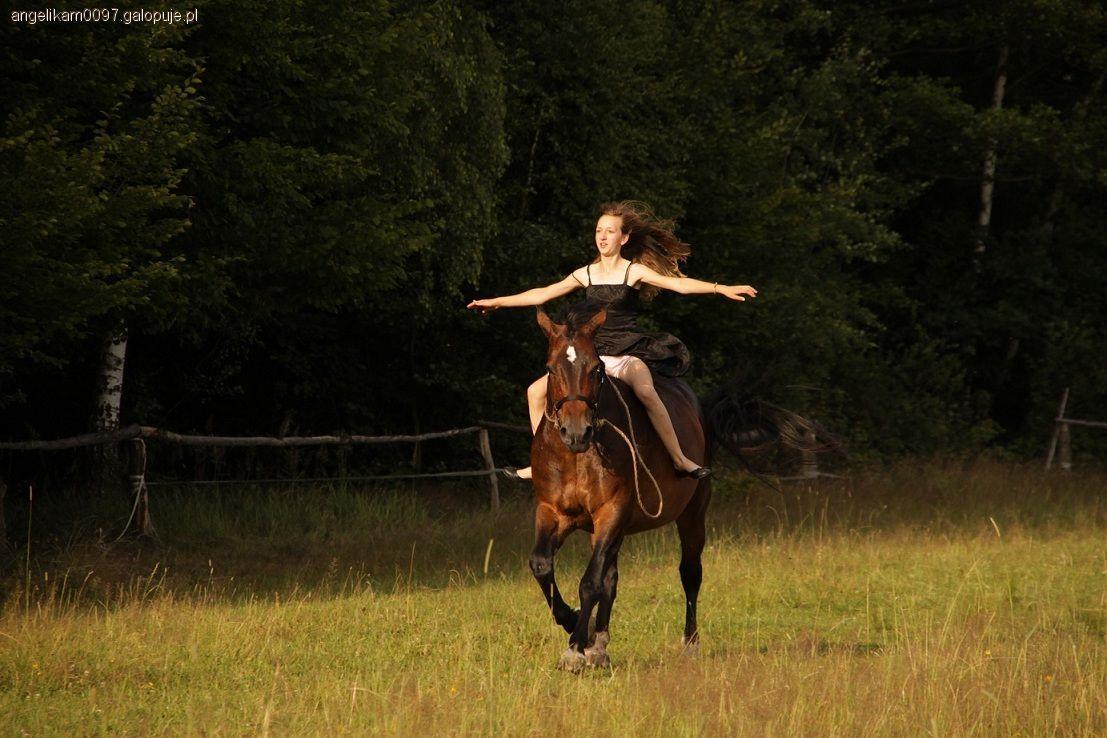 Imprezy jeździeckie, Niezapomniane wakacje - zdjęcie, fotografia