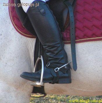Strój jeździecki, ubrać pierwszą lekcję jazdy konnej - zdjęcie, fotografia
