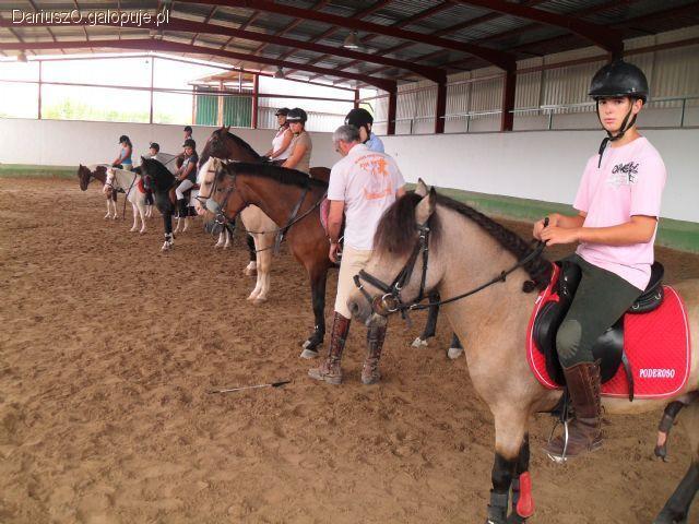 Prawo i przepisy jeździeckie, Instruktor rekreacji ruchowej jazda konna uprawnienia - zdjęcie, fotografia