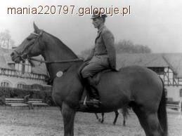 Trening konia, Artemor - zdjęcie, fotografia