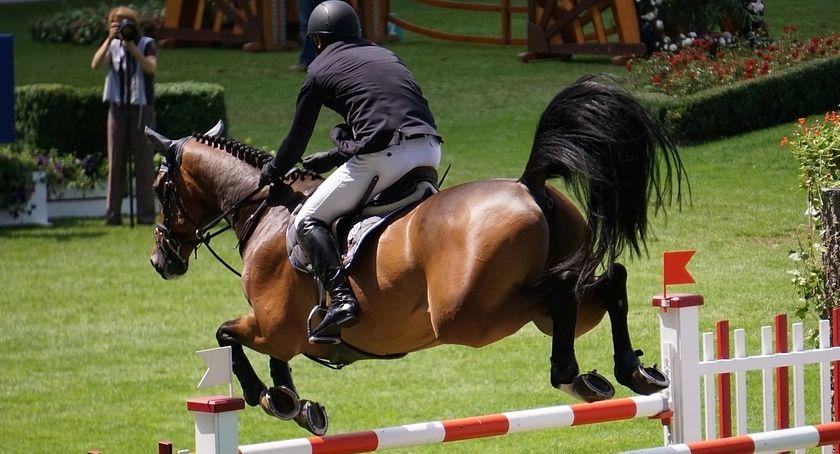Zawody jeździeckie, Facimiech Horse Trials - zdjęcie, fotografia