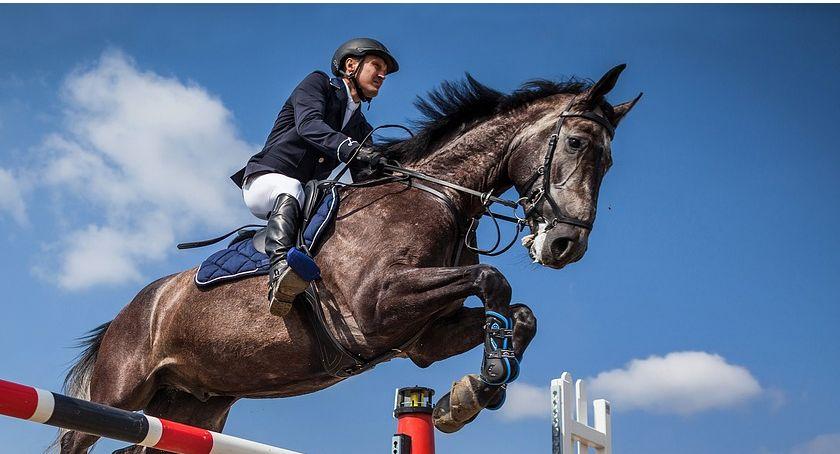 Zawody jeździeckie, PUCHAR JASZKOWA - zdjęcie, fotografia