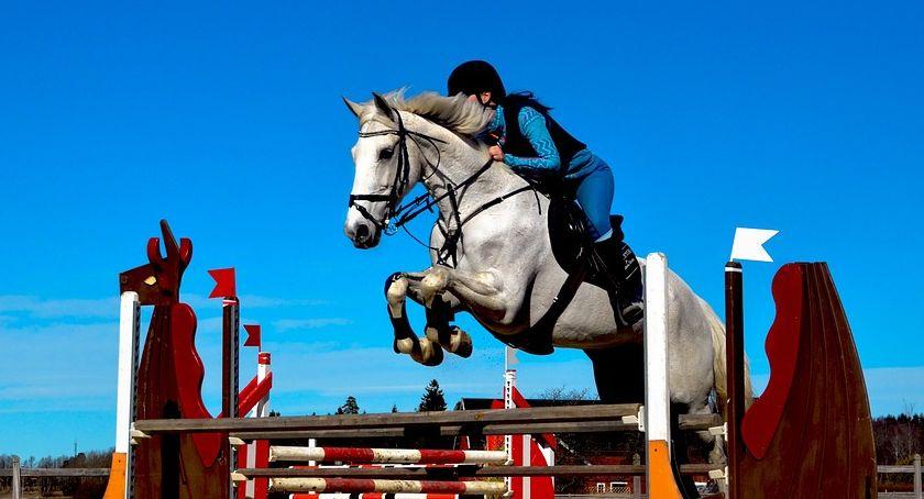 Zawody jeździeckie, HALOWE ZAWODY OGÓLNOPOLSKIE DZIECI MŁODZIEŻY - zdjęcie, fotografia