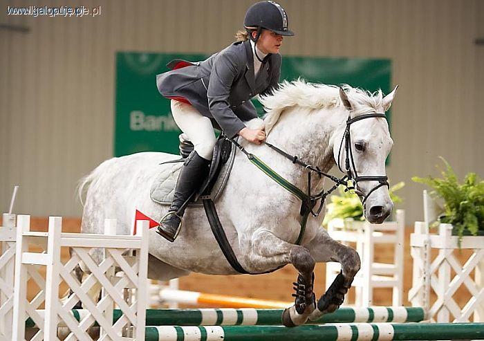 Targi i wystawy jeździeckie, Halowy Puchar Leszna Młodych - zdjęcie, fotografia