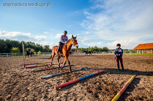 Jazda konna, Szkolenie jeźdźca – TIMING! - zdjęcie, fotografia