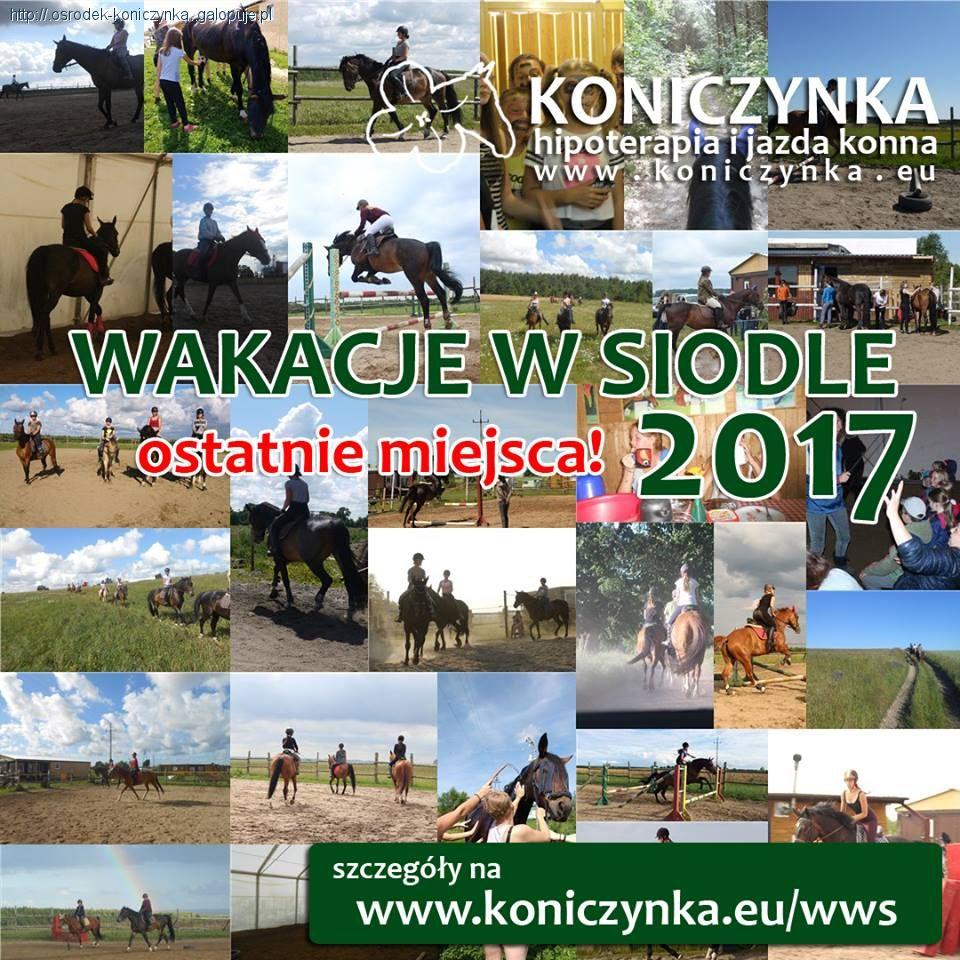 Obozy jeździeckie, Wakacje siodle - zdjęcie, fotografia