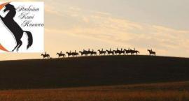 Foto-konkurs Stadnina koni Runowo
