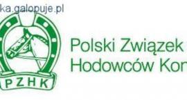 Mistrzostwa Polski Młodych Koni w skokach przez przeszkody 2015