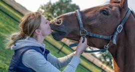 Wywiad z dietetykiem koni - Katarzyną Basińską