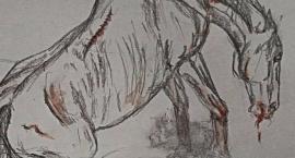 Dramatyczny apel o udział w Manifestacji w obronie koni