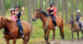 Miłośnicy koni