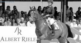 Sponsor dla jeździectwa