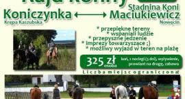 III rajd konny Koniczynka - Stadnina Koni Maciukiewicz