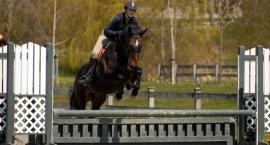 Kursy i szkolenia jeździeckie