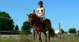 Zdobywanie nowych doświadczeń z końmi