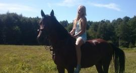 Mój własny koń!