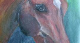 Dlaczego kochamy konie?