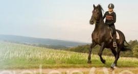 galopuje.pl partnerem Polskiej Agencji Promocji Jeździectwa