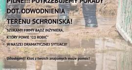 Schronisko w Korabiewicach potrzebuje pomocy!