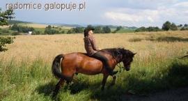 2-dniowy rajd konny po Pogórzu Kaczawskim
