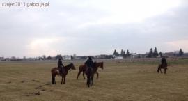 Turystyka konna: Zimowy rajd konny