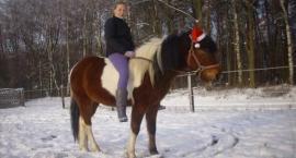 Mikołaj w Naszej Stajence
